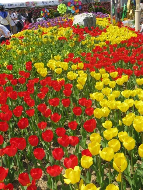 Flowers for Festival
